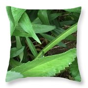 Frog Under Green Throw Pillow