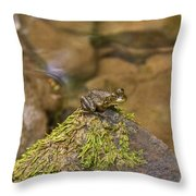 Froggy On A Hill Throw Pillow