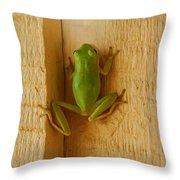 Froggy Throw Pillow