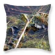 Froggy Pond Throw Pillow