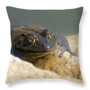 Frogzilla Throw Pillow