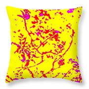 Frolic Throw Pillow by Eikoni Images