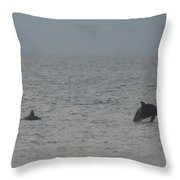 Frolicking Dolphins Throw Pillow
