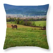 Frolicking On A Spring Morning Throw Pillow