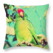 From A High Place Throw Pillow