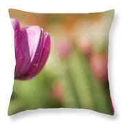 From Across A Crowded Room Throw Pillow