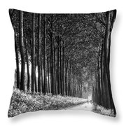 From Bruges To Dam Throw Pillow
