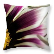 From Crimson To White Throw Pillow