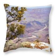 From Desert View Throw Pillow