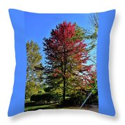 From Green To Red Throw Pillow