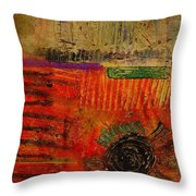 From Hot To Cold And Back Again Throw Pillow
