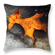 From Last Fall Throw Pillow