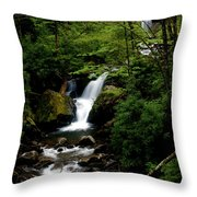 From Out Of The Smoky Mountains Throw Pillow
