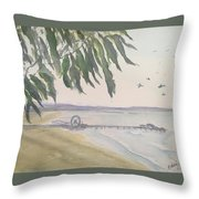 From Park To Pier Throw Pillow