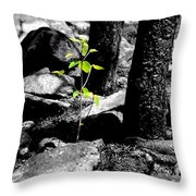 From The Ashes Throw Pillow