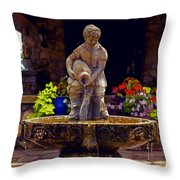 From The Fountain Throw Pillow