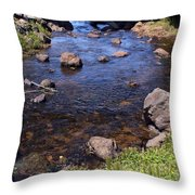From The Mountains To The Sea Throw Pillow