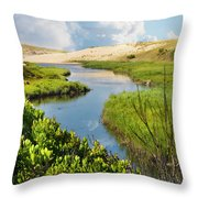 From The Sand Dunes To The Beach Throw Pillow