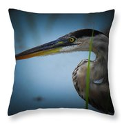 From The Series Great Blue Number 6 Throw Pillow