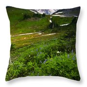 From The Top Throw Pillow by Mike  Dawson