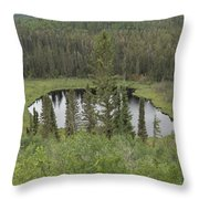 From The Top Of Esker Hills Throw Pillow