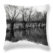 From The Wren Bridge Throw Pillow