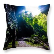 From Within-1 Throw Pillow