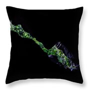 From Within-2 Throw Pillow