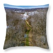 From Woods To Snow Throw Pillow