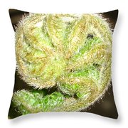 Frond Throw Pillow