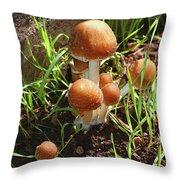 Front Pourch Mushroom Family Throw Pillow