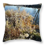 Frost Along Nippersink Creek In Glacial Park At Sunrise Throw Pillow