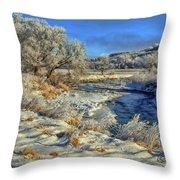 Frost Along The Creek Throw Pillow