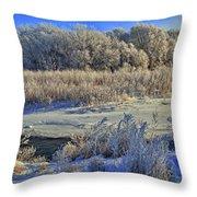 Frost Along The Creek - Panorama Throw Pillow