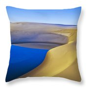 Frost And Ephemeral Pool Throw Pillow