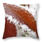 Frost And Leaf Throw Pillow