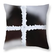 Frost Covered Fence And Horse Throw Pillow