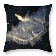 Frost Formation In The Shape Of A Moth Throw Pillow