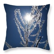 Frost Ice Crystals Throw Pillow