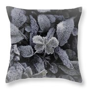 Frost On Leaves 1 Throw Pillow