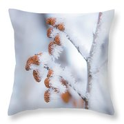 Frost On Pine Cones Throw Pillow