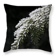 Frost On Pine Throw Pillow