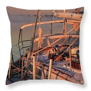 Frost On The Boat Throw Pillow