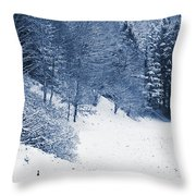Frost Path Throw Pillow
