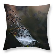 Frost Web Throw Pillow