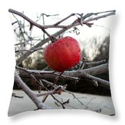 Frosted Apple Throw Pillow