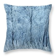 Frosted Beauty Throw Pillow