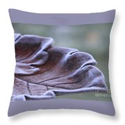 Frosted Bird Bath Throw Pillow by Kathy DesJardins