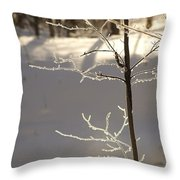 Frosted Branches Throw Pillow
