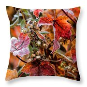 Frosted Fall Throw Pillow